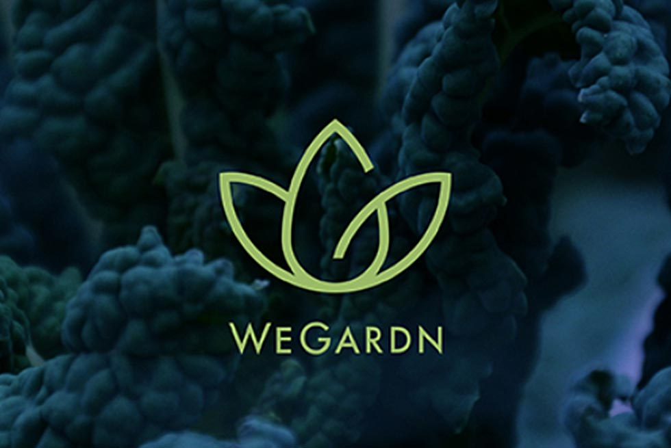 Best for PHL Community Member Spotlight: WeGardn